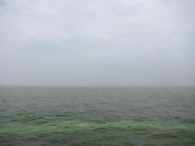 20120615-174405.jpg